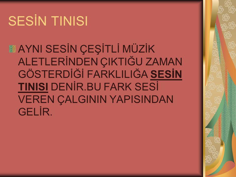 SESİN TINISI