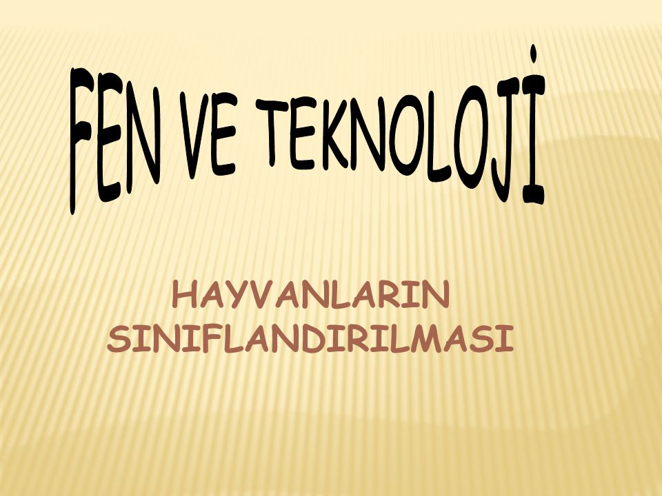 HAYVANLARIN SINIFLANDIRILMASI