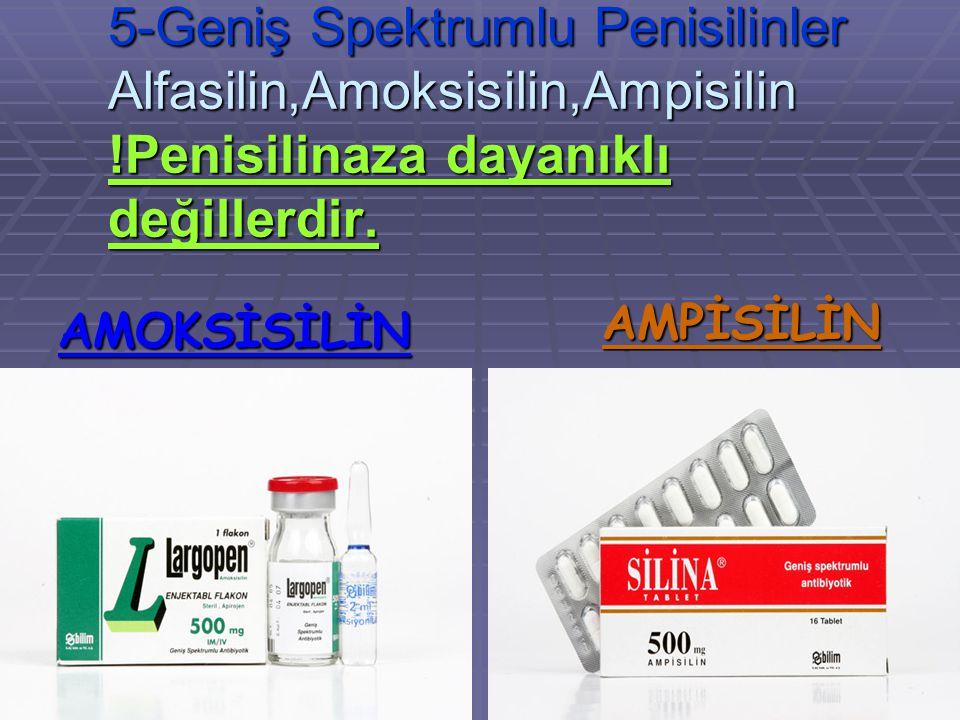 5-Geniş Spektrumlu Penisilinler Alfasilin,Amoksisilin,Ampisilin