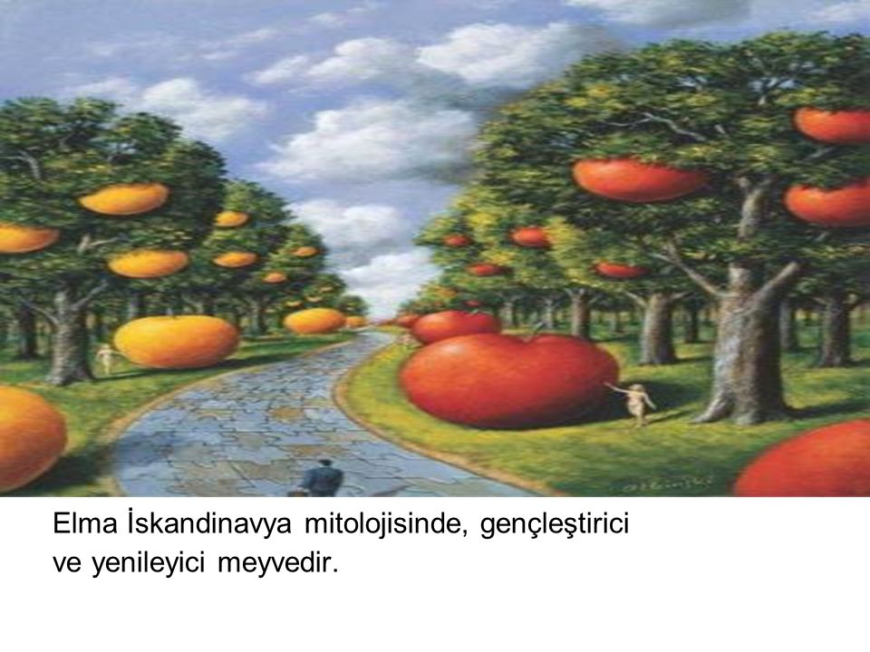 Elma İskandinavya mitolojisinde, gençleştirici