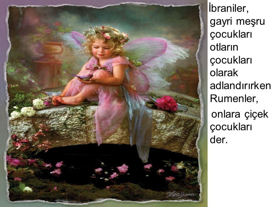 İbraniler, gayri meşru çocukları otların çocukları olarak adlandırırken Rumenler,