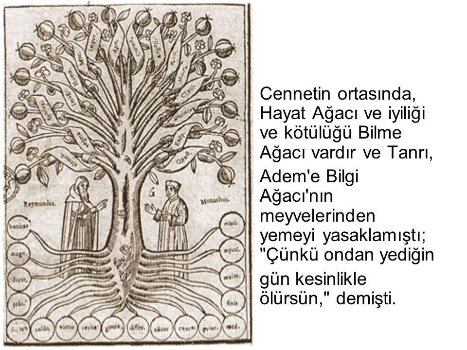 Cennetin ortasında, Hayat Ağacı ve iyiliği ve kötülüğü Bilme Ağacı vardır ve Tanrı,