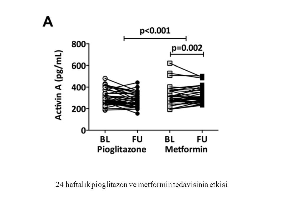 24 haftalık pioglitazon ve metformin tedavisinin etkisi