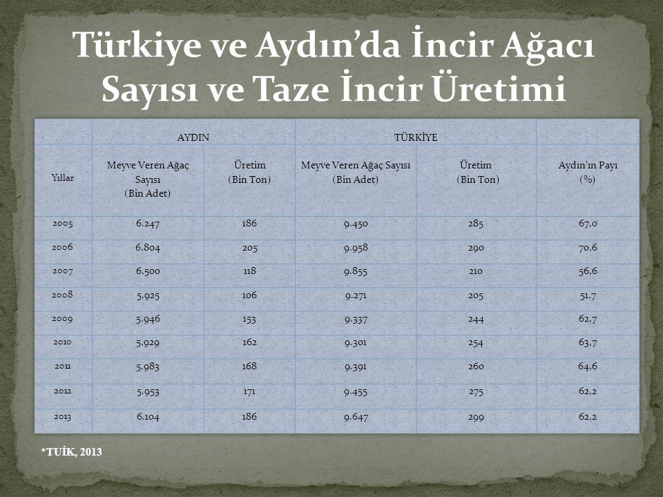 Türkiye ve Aydın'da İncir Ağacı Sayısı ve Taze İncir Üretimi