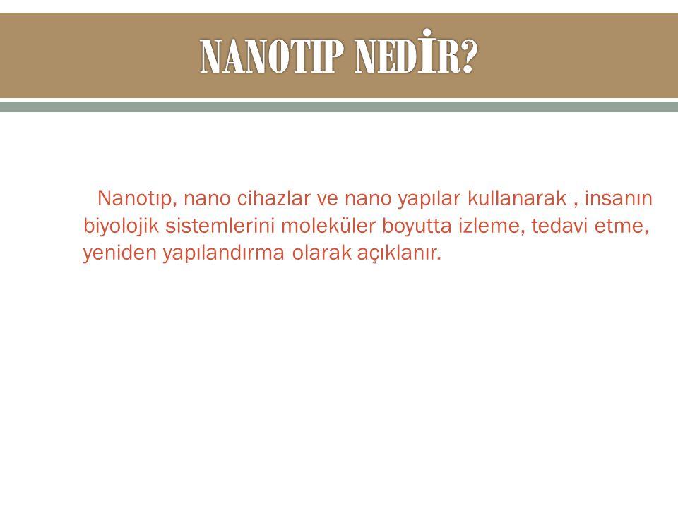 NANOTIP NEDİR