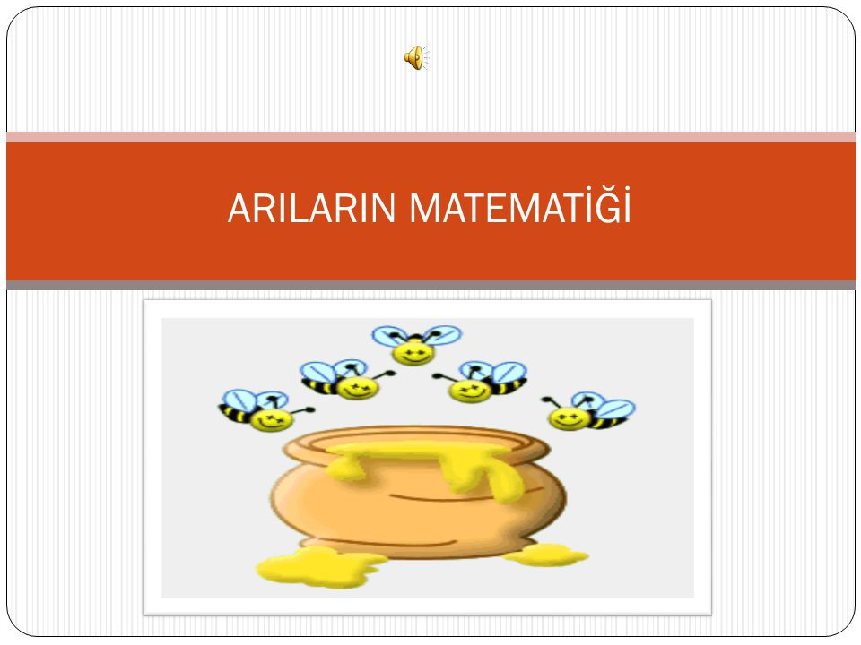 ARILARIN MATEMATİĞİ
