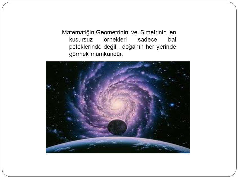 Matematiğin,Geometrinin ve Simetrinin en kusursuz örnekleri sadece bal peteklerinde değil , doğanın her yerinde görmek mümkündür.