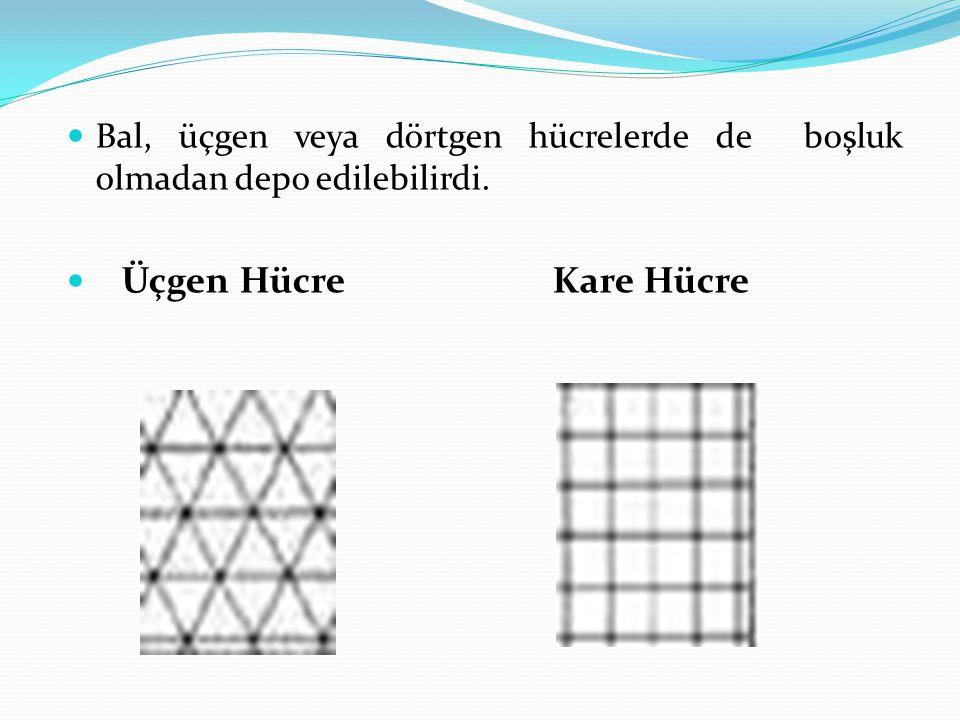 Bal, üçgen veya dörtgen hücrelerde de boşluk olmadan depo edilebilirdi.
