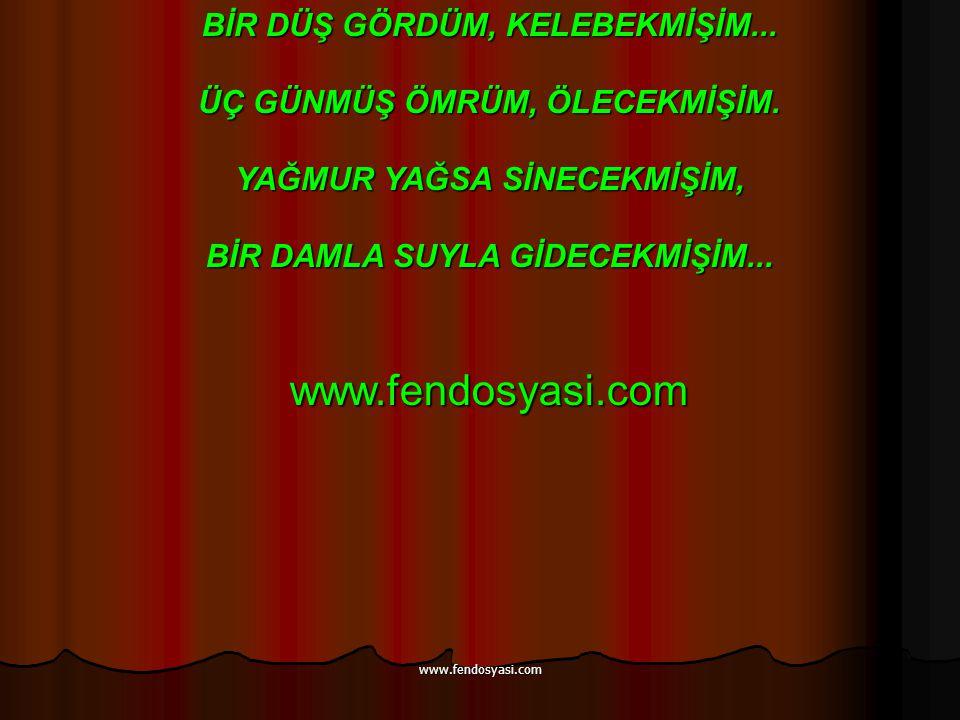www.fendosyasi.com BİR DÜŞ GÖRDÜM, KELEBEKMİŞİM...