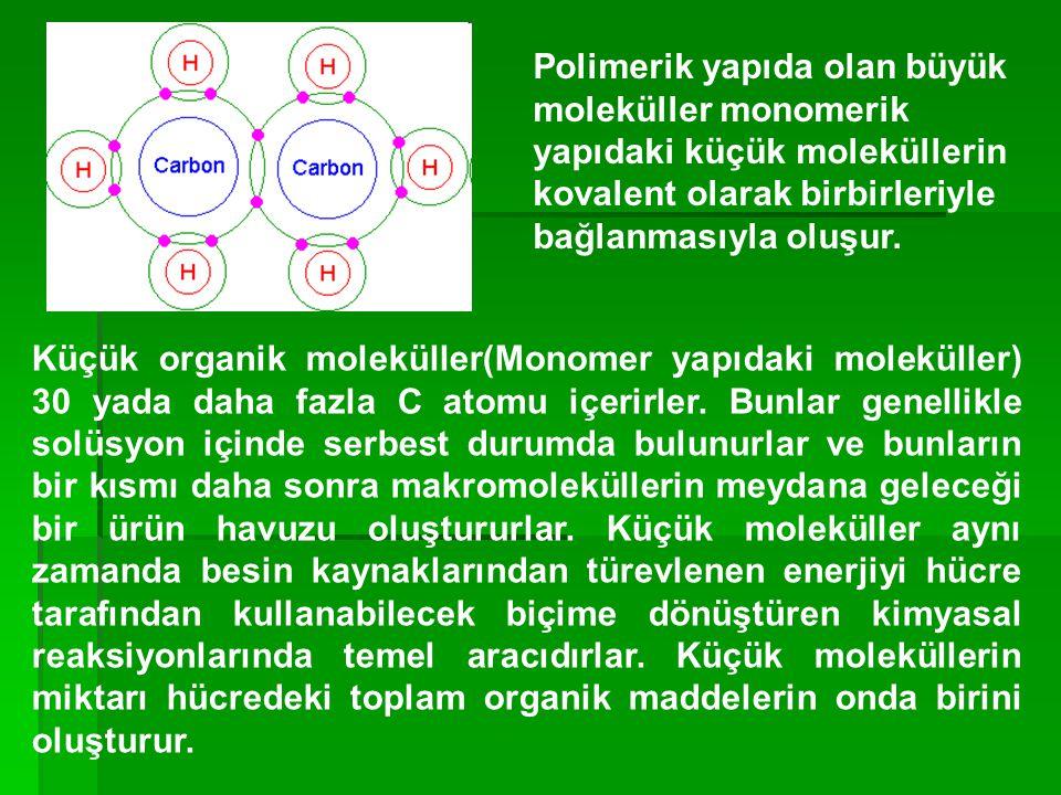 Polimerik yapıda olan büyük moleküller monomerik yapıdaki küçük moleküllerin kovalent olarak birbirleriyle bağlanmasıyla oluşur.