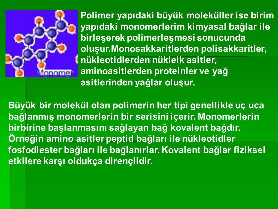 Polimer yapıdaki büyük moleküller ise birim yapıdaki monomerlerim kimyasal bağlar ile birleşerek polimerleşmesi sonucunda oluşur.Monosakkaritlerden polisakkaritler, nükleotidlerden nükleik asitler, aminoasitlerden proteinler ve yağ asitlerinden yağlar oluşur.