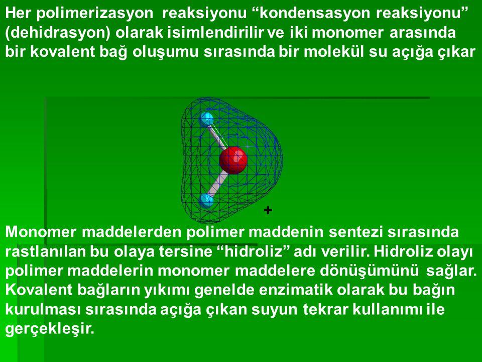 Her polimerizasyon reaksiyonu kondensasyon reaksiyonu (dehidrasyon) olarak isimlendirilir ve iki monomer arasında bir kovalent bağ oluşumu sırasında bir molekül su açığa çıkar