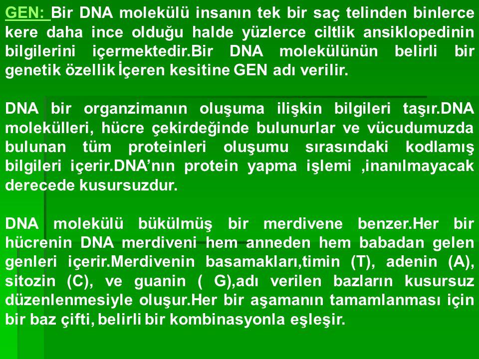 GEN: Bir DNA molekülü insanın tek bir saç telinden binlerce kere daha ince olduğu halde yüzlerce ciltlik ansiklopedinin bilgilerini içermektedir.Bir DNA molekülünün belirli bir genetik özellik İçeren kesitine GEN adı verilir.