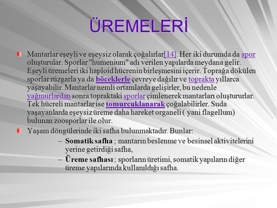 ÜREMELERİ
