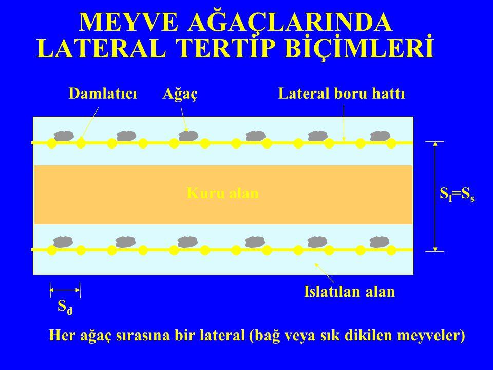 MEYVE AĞAÇLARINDA LATERAL TERTİP BİÇİMLERİ