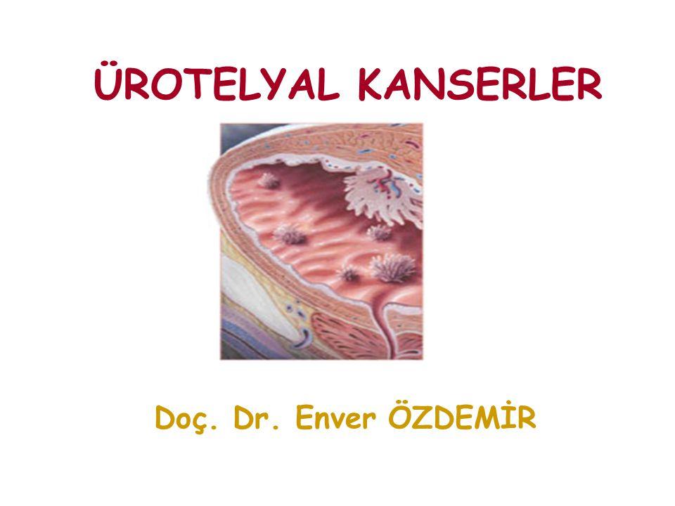 ÜROTELYAL KANSERLER Doç. Dr. Enver ÖZDEMİR