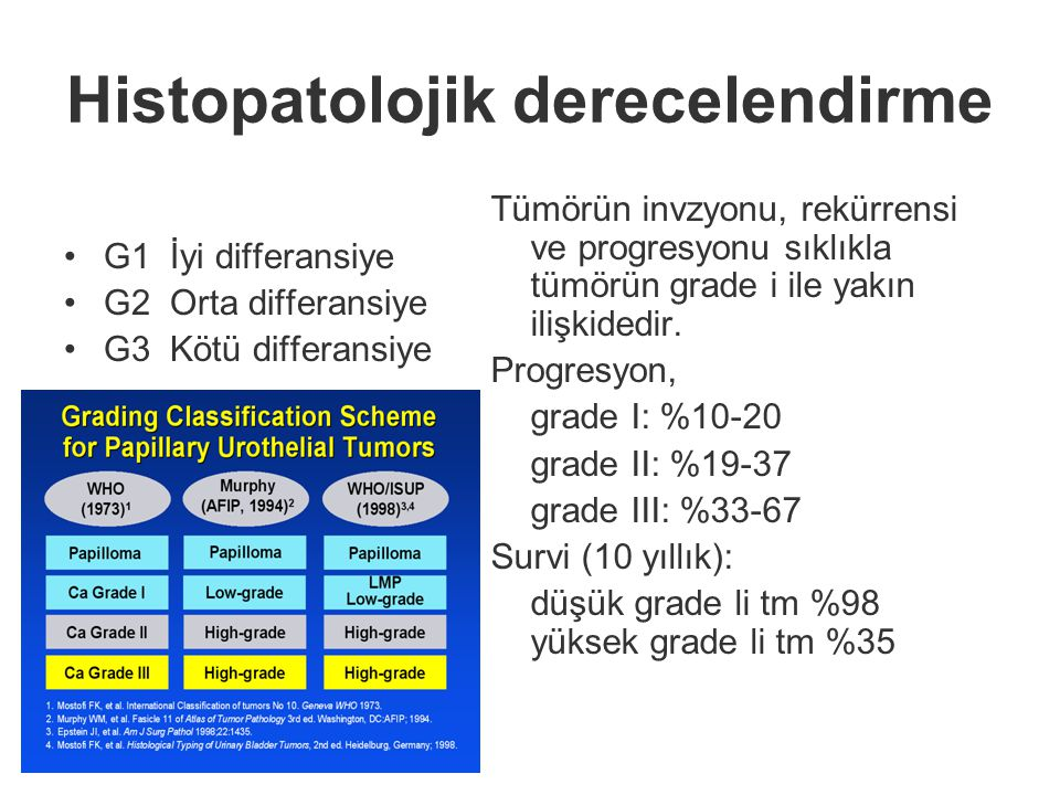 Histopatolojik derecelendirme