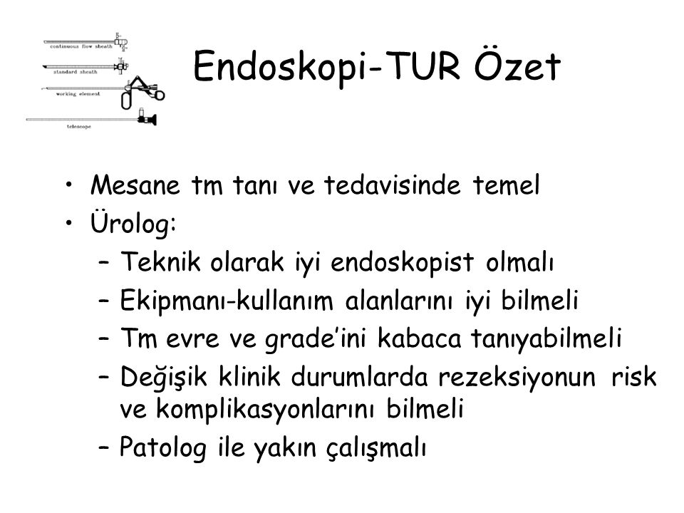 Endoskopi-TUR Özet Mesane tm tanı ve tedavisinde temel Ürolog: