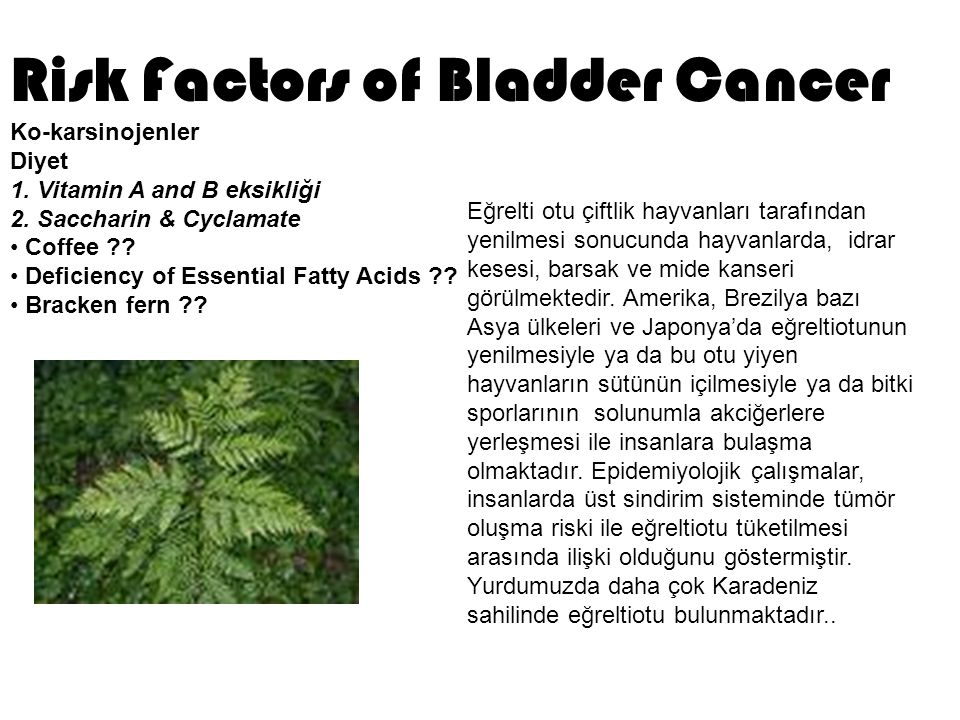 Risk Factors of Bladder Cancer