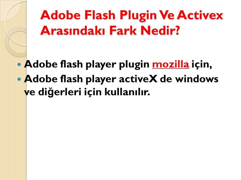 Adobe Flash Plugin Ve Activex Arasındakı Fark Nedir