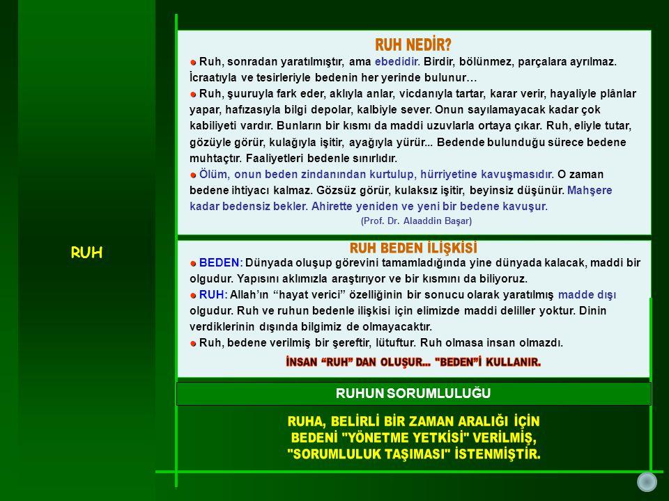 (Prof. Dr. Alaaddin Başar)