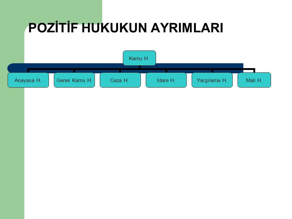 POZİTİF HUKUKUN AYRIMLARI