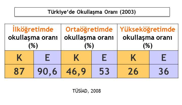 K E 87 90,6 46,9 53 26 36 İlköğretimde okullaşma oranı (%)