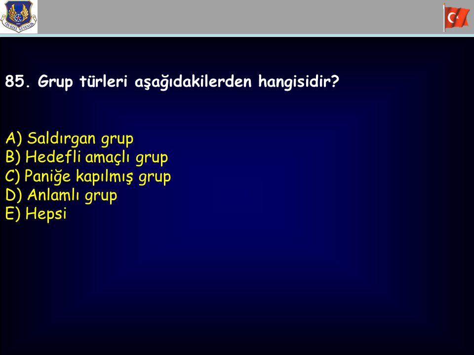 85. Grup türleri aşağıdakilerden hangisidir