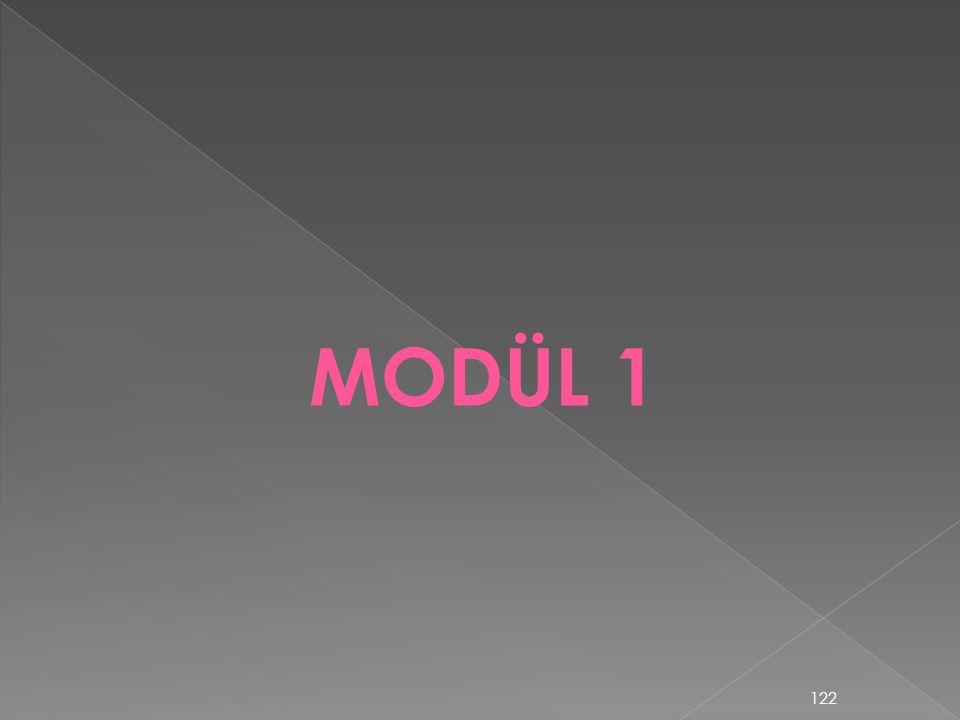 MODÜL 1