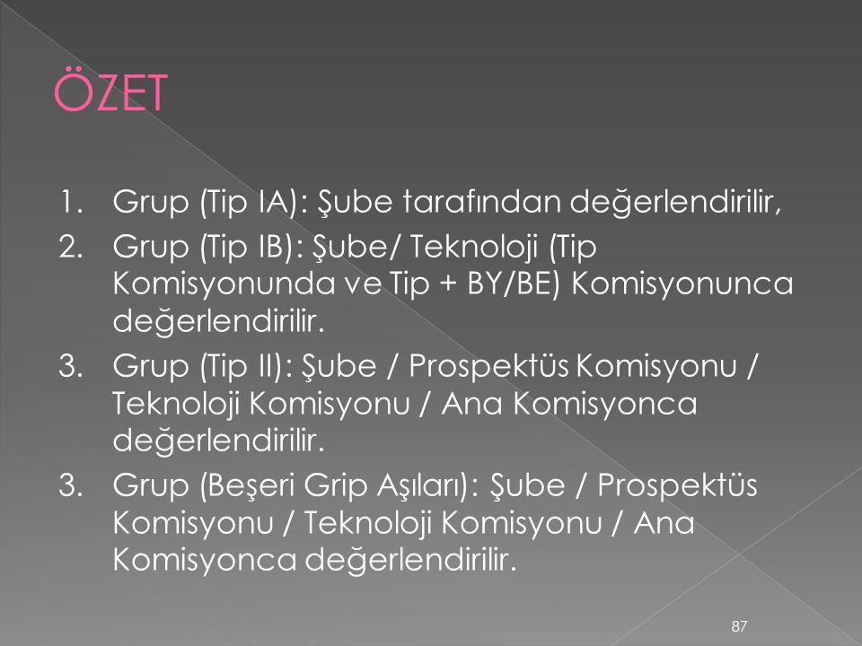ÖZET 1. Grup (Tip IA): Şube tarafından değerlendirilir,
