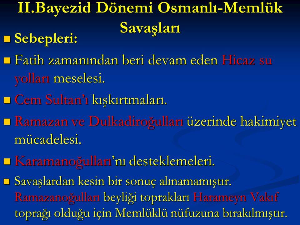 II.Bayezid Dönemi Osmanlı-Memlük Savaşları