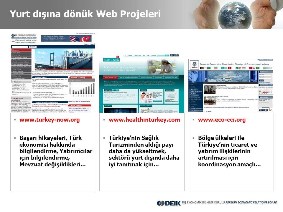 Yurt dışına dönük Web Projeleri