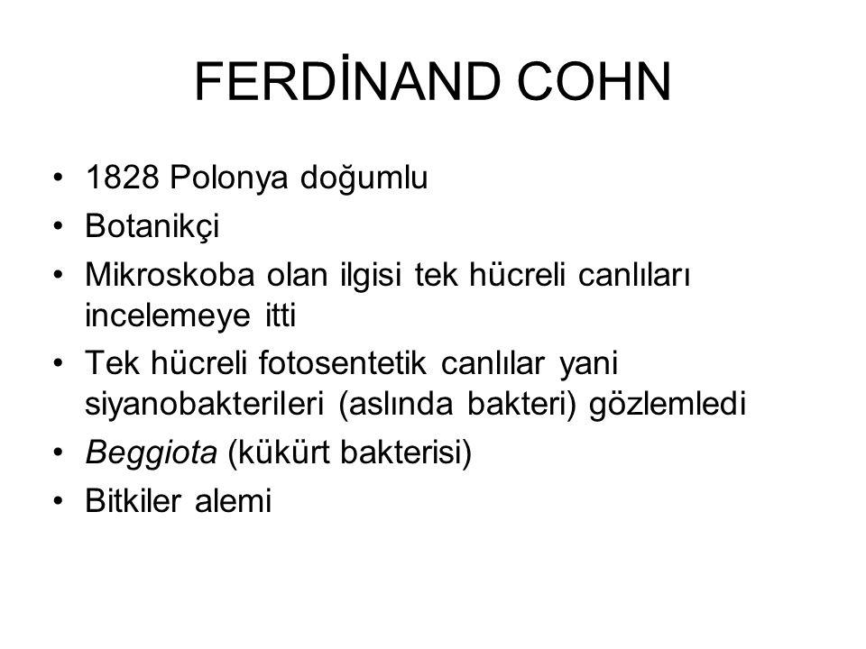 FERDİNAND COHN 1828 Polonya doğumlu Botanikçi