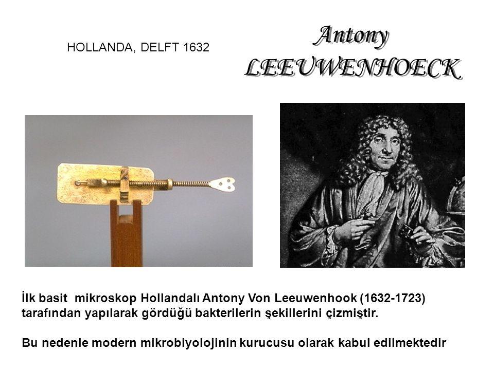Antony LEEUWENHOECK HOLLANDA, DELFT 1632