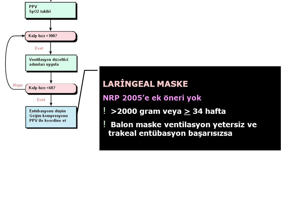 LARİNGEAL MASKE NRP 2005'e ek öneri yok
