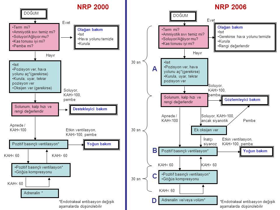 NRP 2000 NRP 2006 A B C D DOĞUM DOĞUM Evet Evet Term mi