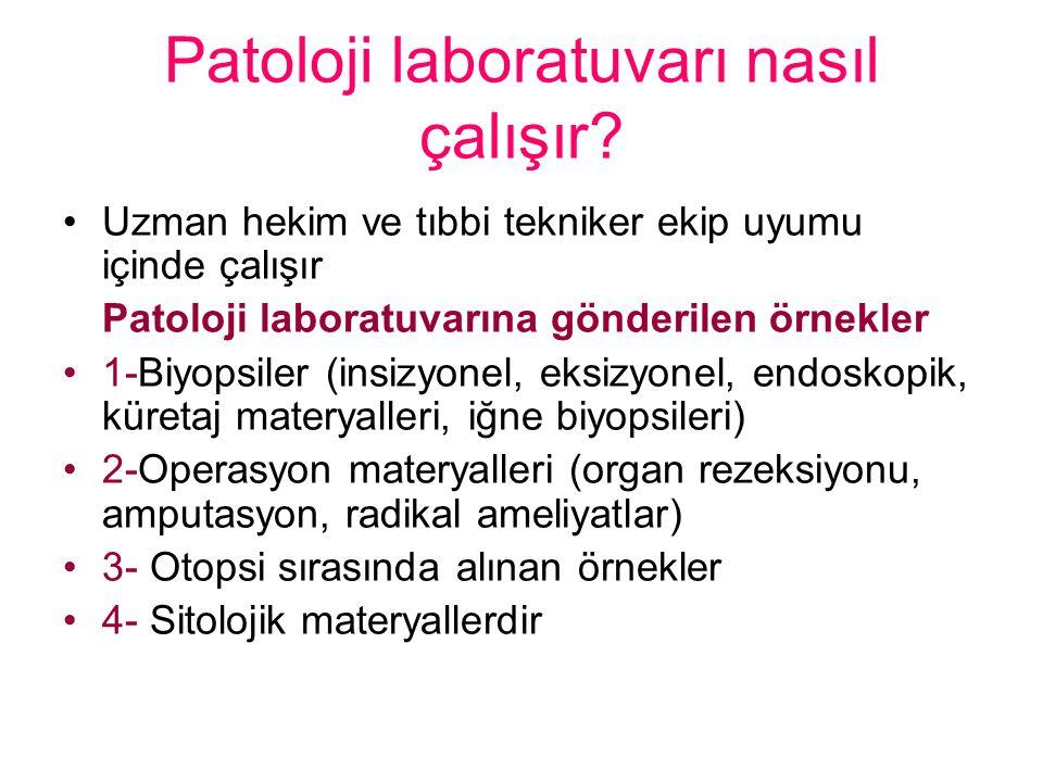 Patoloji laboratuvarı nasıl çalışır
