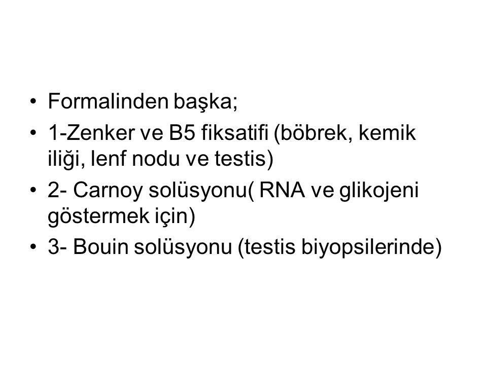 Formalinden başka; 1-Zenker ve B5 fiksatifi (böbrek, kemik iliği, lenf nodu ve testis) 2- Carnoy solüsyonu( RNA ve glikojeni göstermek için)