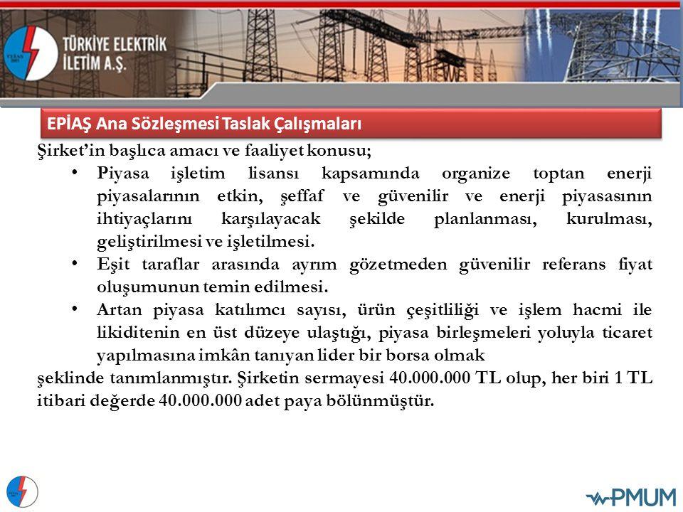 EPİAŞ Ana Sözleşmesi Taslak Çalışmaları