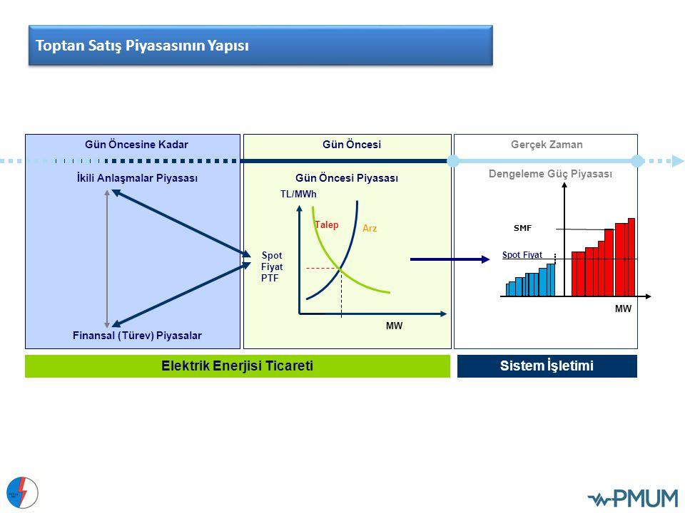 Toptan Satış Piyasasının Yapısı