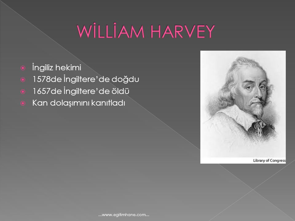 WİLLİAM HARVEY İngiliz hekimi 1578de İngiltere'de doğdu