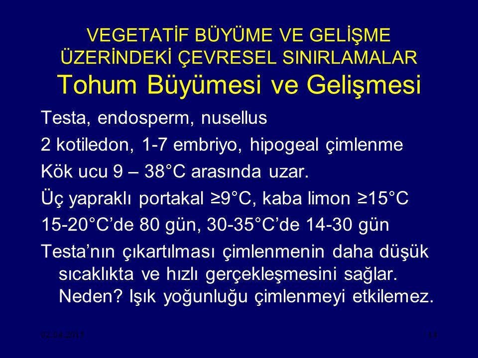 Testa, endosperm, nusellus 2 kotiledon, 1-7 embriyo, hipogeal çimlenme