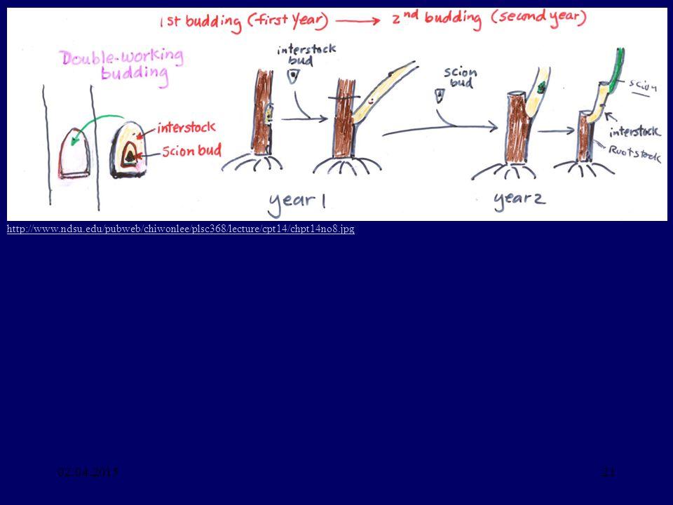 http://www. ndsu. edu/pubweb/chiwonlee/plsc368/lecture/cpt14/chpt14no8