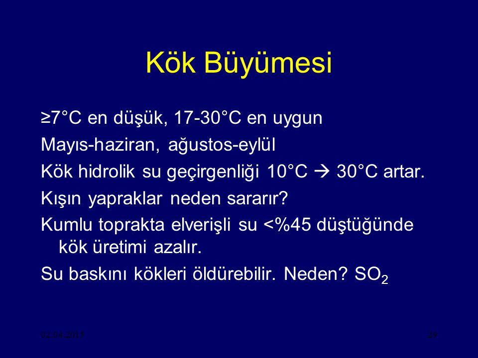 Kök Büyümesi ≥7°C en düşük, 17-30°C en uygun