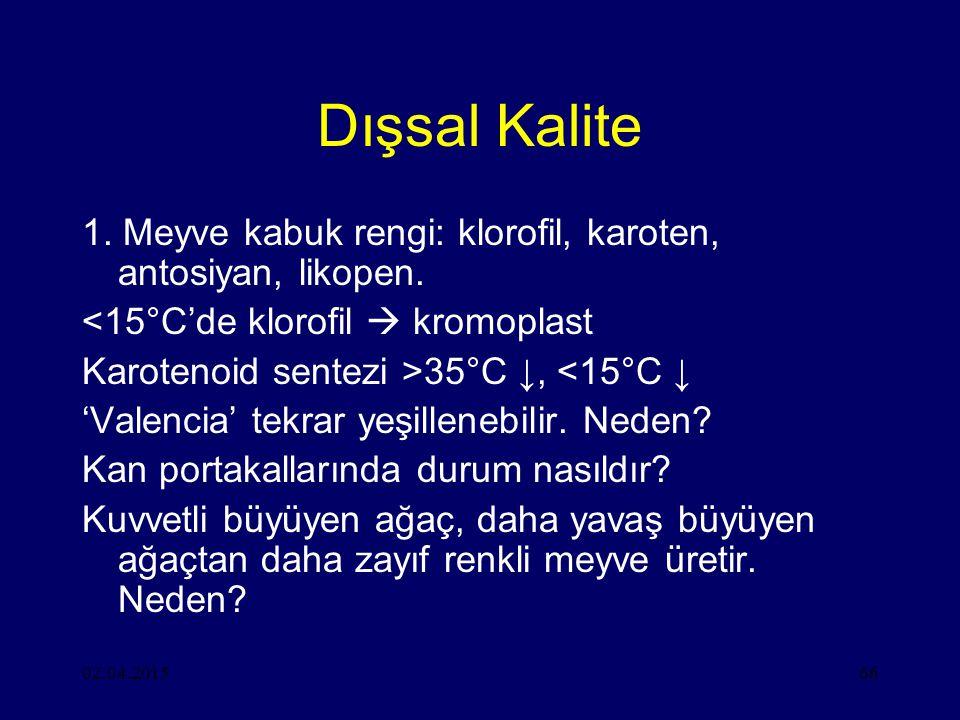 Dışsal Kalite 1. Meyve kabuk rengi: klorofil, karoten, antosiyan, likopen. <15°C'de klorofil  kromoplast.