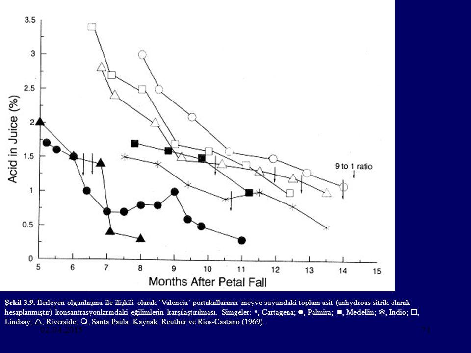 Şekil 3.9. İlerleyen olgunlaşma ile ilişkili olarak 'Valencia' portakallarının meyve suyundaki toplam asit (anhydrous sitrik olarak hesaplanmıştır) konsantrasyonlarındaki eğilimlerin karşılaştırılması. Simgeler: , Cartagena; , Palmira; , Medellin; , Indio; , Lindsay; , Riverside; , Santa Paula. Kaynak: Reuther ve Rios-Castano (1969).