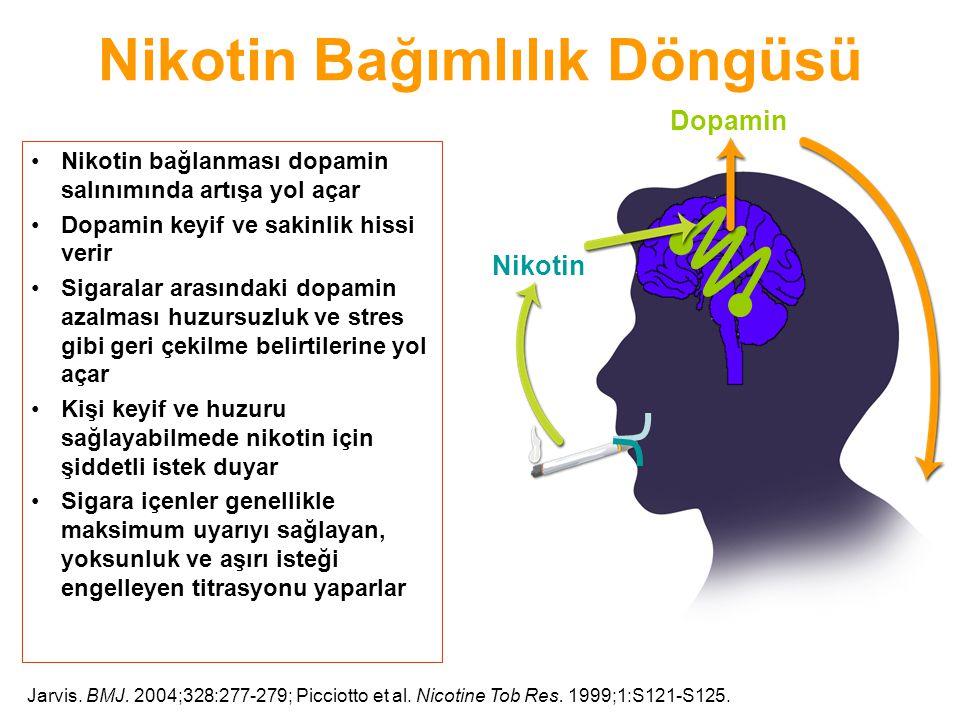 Nikotin Bağımlılık Döngüsü