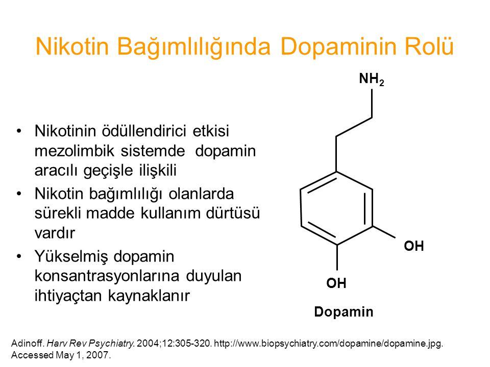Nikotin Bağımlılığında Dopaminin Rolü