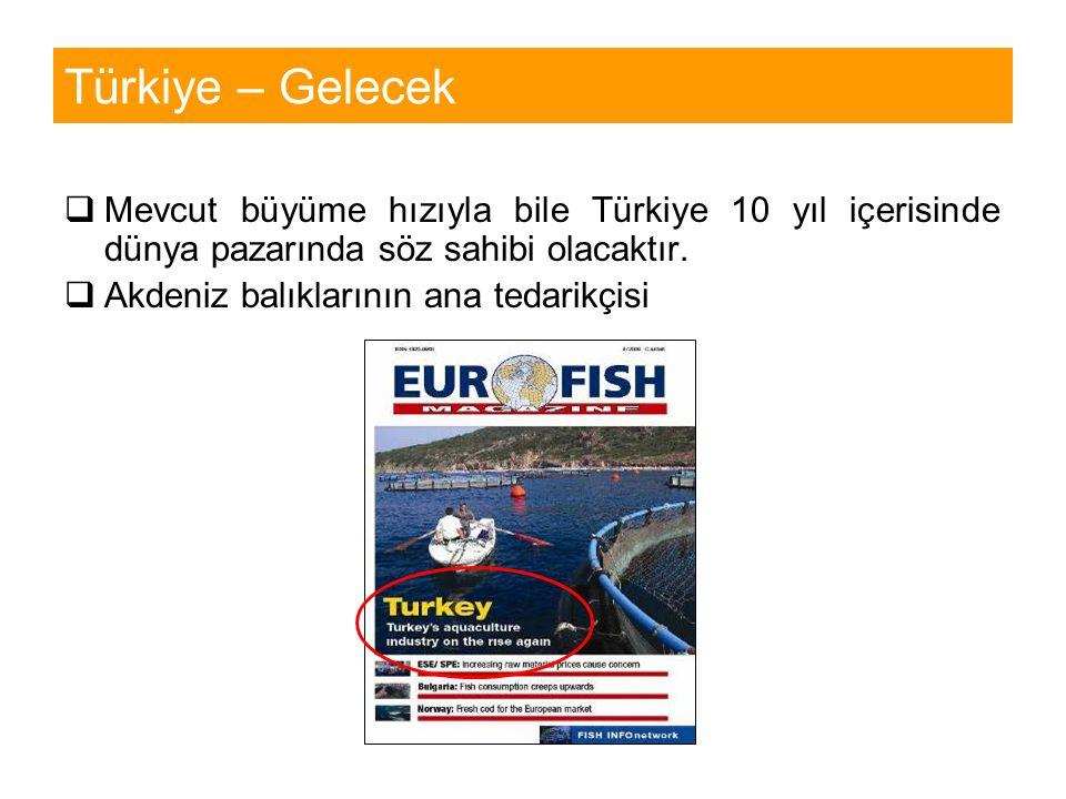 Türkiye – Gelecek Mevcut büyüme hızıyla bile Türkiye 10 yıl içerisinde dünya pazarında söz sahibi olacaktır.