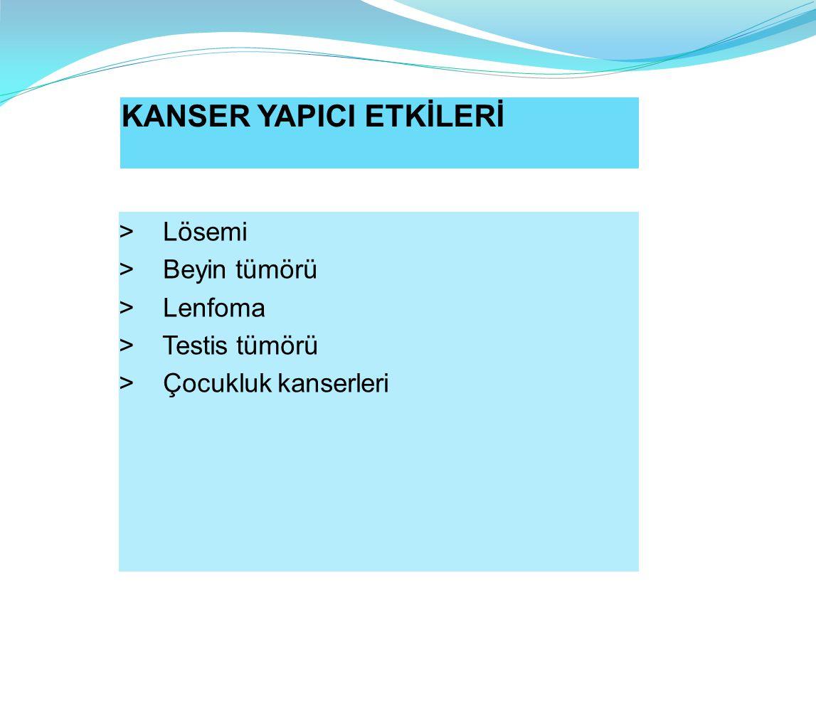 KANSER YAPICI ETKİLERİ